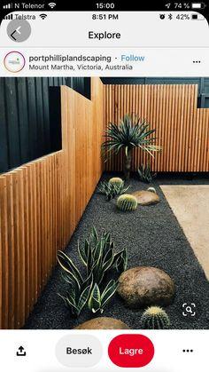 Backyard Fences, Backyard Landscaping, Landscaping Ideas, Patio Ideas, Garden Ideas, Backyard Ideas, Pergola Ideas, Fence Ideas, Desert Backyard