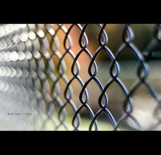I can see the beginning but when does it end? Bokeh, Fence, Boquet