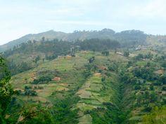 Hill near Baptist Mission Haiti