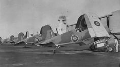 F4U Corsairs ready for delivery to the Royal Navy's Fleet Air Arm in 1944. They saw considerable service covering the Arctic convoys to Russia.