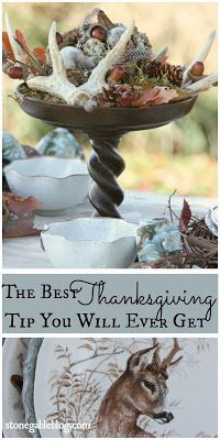 THE VERY BEST THANKSGIVING TIP YOU WILL EVER GET, seriously! You need to see this tip!