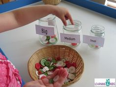 measurement activity - big medium and small sort