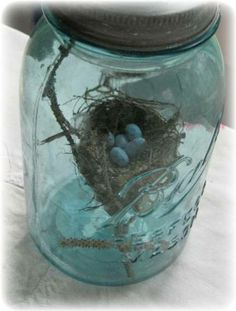 Nest in blue jar