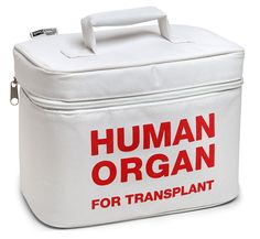 Human Organ Transport Lunch Cooler