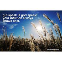 Gut speak is God speak!  Your intuition always knows best.