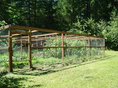 Vegetable Garden Fence | Home Orchard Society Forums - View topic - Viron's Tour