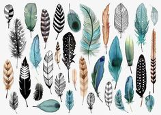 Margaret Berg Art : Illustration : all occasion / novelty(Diy Art Watercolor) Feather Art, Bird Feathers, Feather Drawing, Watercolor Feather, Tattoo Feather, Watercolour, Paper Feathers, Coloured Feathers, Feather Painting