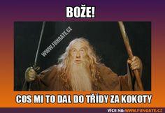 Cos mi to dal do třídy za kokoty. Gandalf, Good Jokes, Lotr, Haha, Angel, Humor, Memes, Quotes, Fun