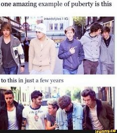 One amazing example of puberty is this - iFunny :) Memes One Direction, One Direction Images, I Love One Direction, Zayn, Niall Horan, Normal Guys, 1d And 5sos, Larry Stylinson, Liam Payne