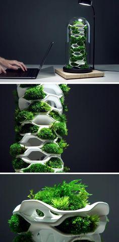 Garden Terrarium, Garden Planters, Terrariums, Vertical Farming, Vertical Planter, Yanko Design, Ergonomic Chair, Vivarium, 3d Prints