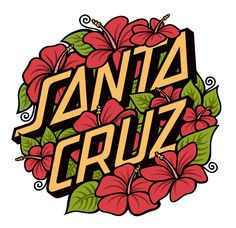 Designs for Santa Cruz Skateboards, 2011