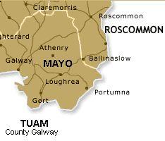 Irish Roots of Surname McHale Genealogy County Mayo Ireland History
