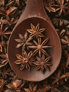 Find images and videos about brown, spices and star anise on We Heart It - the app to get lost in what you love. Spices And Herbs, Star Anise, Brown Aesthetic, Paperclay, Seed Pods, Brown Beige, Yule, My Favorite Color, Spice Things Up