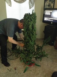 They didn't want to spend money on a new tree, so what they do? Genius