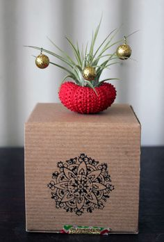 Air plant tillandsia holiday decor idea via Etsy.  A different take on Christmas.