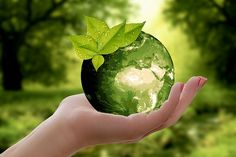 Why is a green earth a necessity for the survival of life? Read more to know about the importance of green earth and green technology. Ian Somerhalder Foundation, Prevent Arthritis, Arthritis Relief, Happy Earth, Natural Resources, Divine Feminine, Feminine Energy, Earth Day, Planet Earth