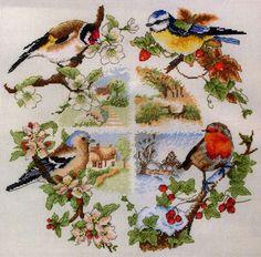 птахи 25