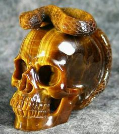 Tiger's eye skull and snake carving Crystals Minerals, Rocks And Minerals, Crystals And Gemstones, Stones And Crystals, Totenkopf Tattoos, Skeleton Watches, Human Skull, Crystal Skull, Rocks And Gems