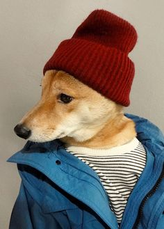 Menswear Dog ~ Deadliest Catch ~ Garment Dyed Field Jacket: Coach (Wyatt)  |  Beanie: Vintage (XCVB alternative)  |  Sweater: Club Monaco