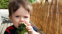 #Coroner told that sleep-deprived mum who left son in car was on 'auto-pilot' - The Age: The Age Coroner told that sleep-deprived mum who…