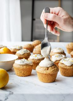 Vegan Lemon Muffins Vegan Meyer Lemon Chia Muffins are a great healthy snack or breakfast. Make a batch ahead of time and freeze them for when you need something quick! Healthy Vegan Dessert, Cake Vegan, Vegan Sweets, Vegan Desserts, Healthy Snacks, Quick Snacks, Vegan Snacks, Healthy Habits, Gourmet Recipes