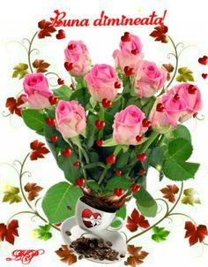 Morning Greeting, Good Day, Plants, Friends, Bonito, Buen Dia, Amigos, Good Morning, Hapy Day