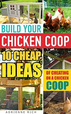 FREE TODAY  Build Your Chicken Coop: 10 Cheap Ideas Of Cheating On A Chicken Coop: (Keeping Chickens, Raising Chickens For Dummies, Chickens, Ducks and Turkeys, Urban ... Guide to Raising Backyard Chickens) by Adrienne Rich http://www.amazon.com/dp/B00ZV50WZC/ref=cm_sw_r_pi_dp_xY1Uvb13KENCQ