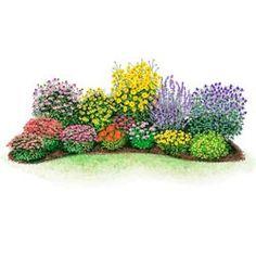 Shade Plants Perennials For Zone 5 Garden Plans