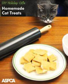 Whip up these quick DIY Tuna Cat Treats for the holidays!