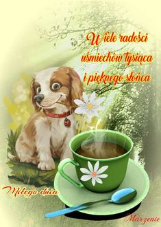 Słodziak... Humor, Happy Wednesday, Borders And Frames, Thursday, Pictures, Polish, Humour, Funny Photos, Funny Humor