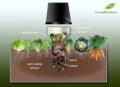 Why wouldn't you put your compost to work right next to the plants in your garden??? Plus the benefits of ariation & worm casting fertilizer....GENIUS!! ~Build a Worm Tower To Spread Compost Over Your Garden