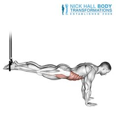 Workout Plan For Men, Gym Workout Tips, Workout Videos, Mens Fitness, Fitness Tips, Strength Training For Runners, Full Body Workout Routine, Ab Roller, Wine Painting