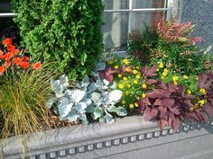 Chase planters