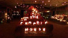 Pumpkin House, Christmas Bulbs, Holiday Decor, Home Decor, Decoration Home, Christmas Light Bulbs, Room Decor, Home Interior Design, Home Decoration