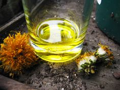 Dandelion Infused Herbal Oil