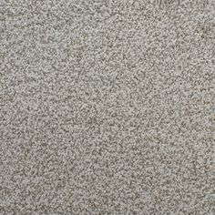 shop stainmaster active family huntington heights gray textured indoor carpet at lowescom