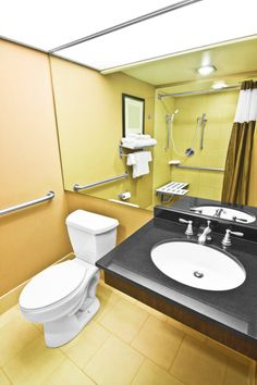 5 Amazing Wheel Chair Accessible Bathroom Design Picture