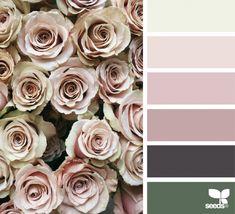 Rose Tones | Design Seeds