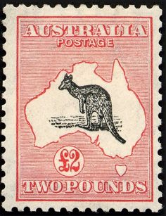 Bid on rare stamps in our live philatelic stamp auction, offered every two months, and in real time Sell Stamps, Rare Stamps, King George V, Australia Kangaroo, Grey Roses, Fauna, Stamp Collecting, My Stamp, Postage Stamps