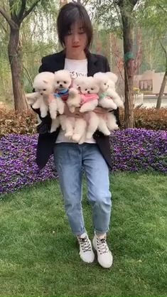 Cute Fluffy Puppies, Cute Dogs And Puppies, Baby Dogs, Beagle Puppies, Cute Little Animals, Cute Funny Animals, Cute Cats, Youtube Animals, Niedlicher Panda