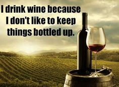 I drink wine funny quotes quote wine lol funny quote funny quotes humor Funny Drinking Quotes, Funny Quotes, Wine Drinks, Alcoholic Drinks, Cocktails, Fancy Drinks, Wine Meme, Wine Gift Baskets, Alcohol Humor