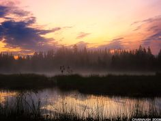 """A misty swamp. According to the Finnish mythology, it's sometimes possible to see ghost lights in the swamp. Those lights reveal the location of a treasure that is protected by a spirit, """"haltija"""", called aarni. The light, among the folklore, is caused by a fire that aarni uses when he cleans the treasure."""