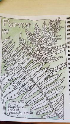 Mom's Nature Journal inspiration Sketchbook Inspiration, Art Sketchbook, Journal Inspiration, Journal Pages, Journals, Nature Artists, Nature Table, Nature Study, Nature Journal