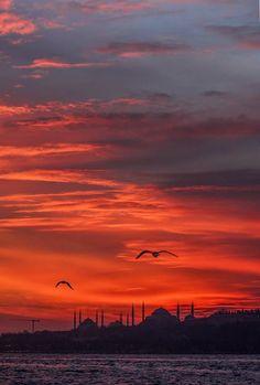 - Photography, Landscape photography, Photography tips Photography Tips, Landscape Photography, Islam, Visit Turkey, Phone Wallpaper Images, Cityscape Art, Picture Description, Istanbul Turkey, Beautiful Sky