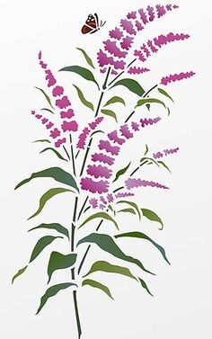 Beautiful wild flower stencil. 1 sheet smallstencil The beautiful Little Buddleia Stencil is perfect for botanical wild flower stencilling projects. This stencil of a small spray of buddleia is based on Henny's buddleia studies and sketches and is an extremely versatile stencil. Ideal for beginners. Great for cushion covers, scarves, handkerchiefs, or for home accessories, such as frames and boxes and great for paper and craft work suchas gift cards andwrapping. Also comes witha tiny...