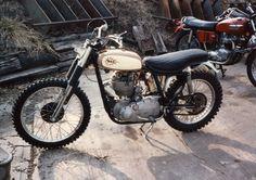 1955 BSA Goldstar
