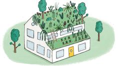 """Creating a green roof is like """"putting together an intricate jigsaw."""" Here, a New York architect and green roof pro walks through the process of designing and installing a lush living rooftop."""