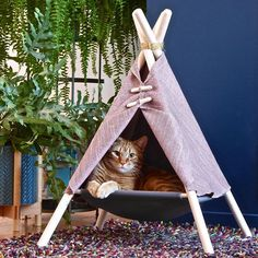 The Adventure Tent is a super fun cat bed, cat hammock, and cat tent in one modern pet friendly design. Made in Canada by Tinker. Cat Teepee, Cat Tent, Cat Hammock, Cat Kennel, Adventure Cat, Cat Room, Pet Furniture, Pet Beds, Crazy Cats