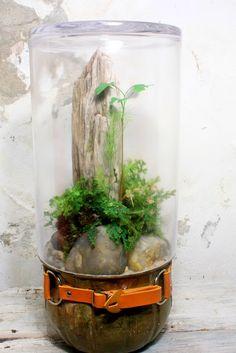 Concepto. Terrario hecho con botella pet revestida con diversos materiales decorativos (hipertufa, cemento, cerámica fria, metal, madera, etc)