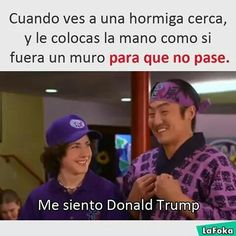 Me siento Donald Trump xdxdxdxd